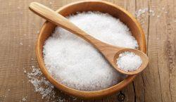 Ir. Leo Nababan : Menjadi Garam yang Menggarami