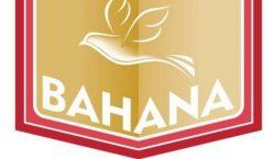 BAHANA BIBLE STUDY