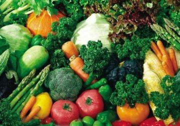 Sehat dan Cerdas untuk Remaja Nutrisi Pendongkrak Otak