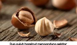 Manfaat Hazelnut