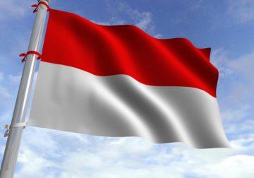 Fakta di Balik Tema HUT RI ke-74 'SDM Unggul Indonesia Maju'