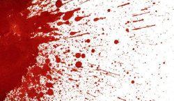 Darah dari Celah Pagar Bambu