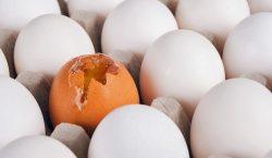 """""""Dari telur retak sampai cicilan rumah, semua bukti kalau Tuhan…"""