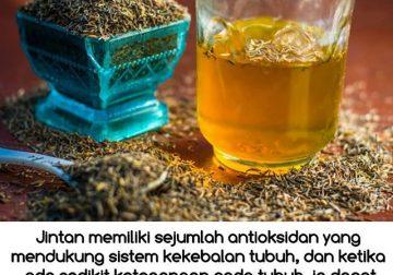 Manfaat Rebusan Air Jintan untuk Menurunkan Berat Badan
