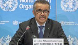Bos WHO Peringatkan Kasus Infeksi COVID-19 Dekati Level Tertinggi