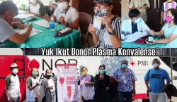 Ayo Gereja, Donor Plasma Konvalesen